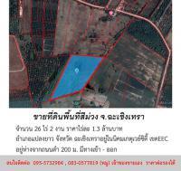 ขายที่ดิน พื้นที่สีม่วง จำนวน 26 ไร่ 2 งาน อำเภอแปลงยาว จังหวัดฉะเชิงเทรา