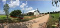 ที่ดินพร้อมสิ่งปลูกสร้างหลุดจำนอง ธ.ธนาคารกรุงไทย มหาสารคาม กิ่งอำเภอกุดรัง ตำบลเลิงแฝก