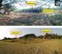 ที่ดินเปล่าหลุดจำนอง ธ.ธนาคารกรุงไทย ราชบุรี อำเภอโพธาราม ตำบลดอนกระเบื้อง