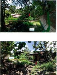 บ้านเดี่ยวหลุดจำนอง ธ.ธนาคารกรุงไทย เชียงใหม่ ฝาง เวียง