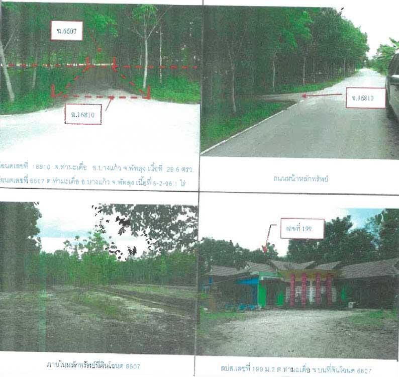 ที่ดินพร้อมสิ่งปลูกสร้างหลุดจำนอง ธ.ธนาคารกรุงไทย พัทลุง อำเภอบางแก้ว ตำบลท่ามะเดื่อ