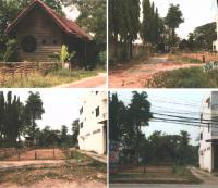 ที่ดินพร้อมสิ่งปลูกสร้างหลุดจำนอง ธ.ธนาคารกรุงไทย พิษณุโลก เมืองพิษณุโลก ในเมือง