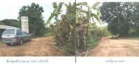 ที่ดินพร้อมสิ่งปลูกสร้างหลุดจำนอง ธ.ธนาคารกรุงไทย ราชบุรี อำเภอปากท่อ ตำบลอ่างหิน