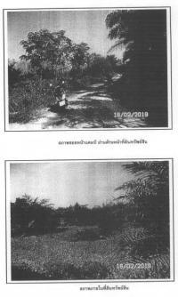 ที่ดินเปล่าหลุดจำนอง ธ.ธนาคารกรุงไทย สุราษฎร์ธานี เวียงสระ เขานิพันธ์