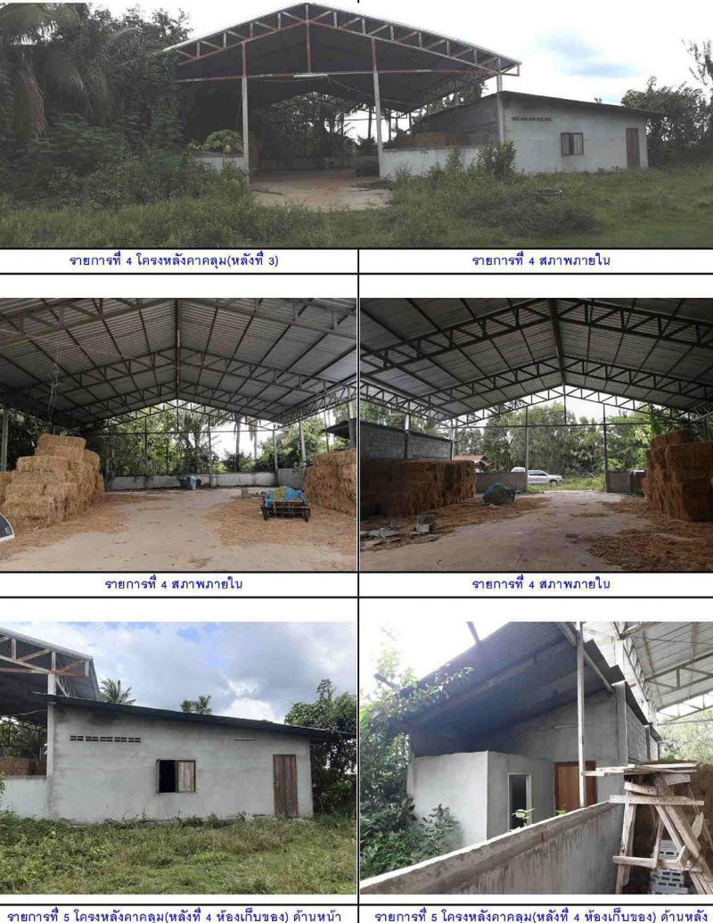 ที่ดินพร้อมสิ่งปลูกสร้างหลุดจำนอง ธ.ธนาคารกรุงไทย สุรินทร์ เมืองสุรินทร์ นาบัว