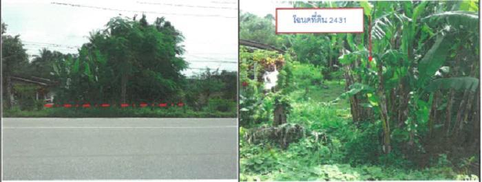 ที่ดินเปล่าหลุดจำนอง ธ.ธนาคารกรุงไทย ตรัง อำเภอสิเกา ตำบลนาเมืองเพชร