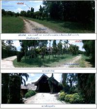 ที่ดินพร้อมสิ่งปลูกสร้างหลุดจำนอง ธ.ธนาคารกรุงไทย เชียงราย อำเภอแม่สาย ตำบลเกาะช้าง