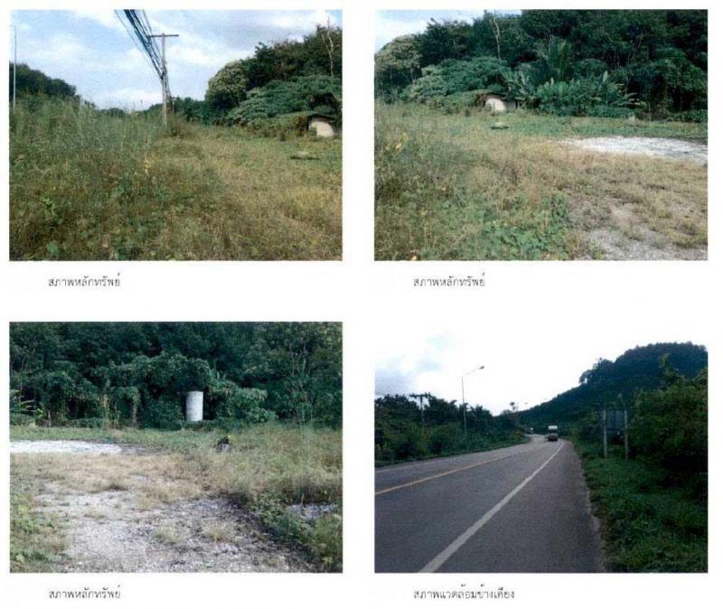 ที่ดินเปล่าหลุดจำนอง ธ.ธนาคารกรุงไทย สุราษฎร์ธานี อำเภอพนม ตำบลคลองชะอุ่น