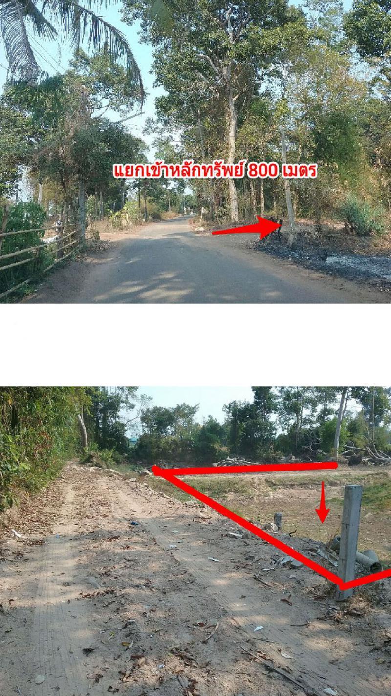 ที่ดินเปล่าหลุดจำนอง ธ.ธนาคารกรุงไทย ยโสธร เมืองยโสธร น้ำคำใหญ่