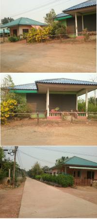 ที่ดินพร้อมสิ่งปลูกสร้างหลุดจำนอง ธ.ธนาคารกรุงไทย กำแพงเพชร เมืองกำแพงเพชร นิคมทุ่งโพธิ์ทะเล