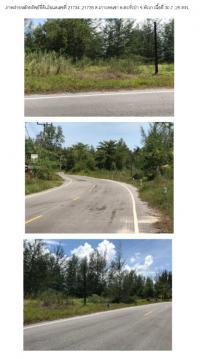 ที่ดินเปล่าหลุดจำนอง ธ.ธนาคารกรุงไทย พังงา ตะกั่วป่า เกาะคอเขา