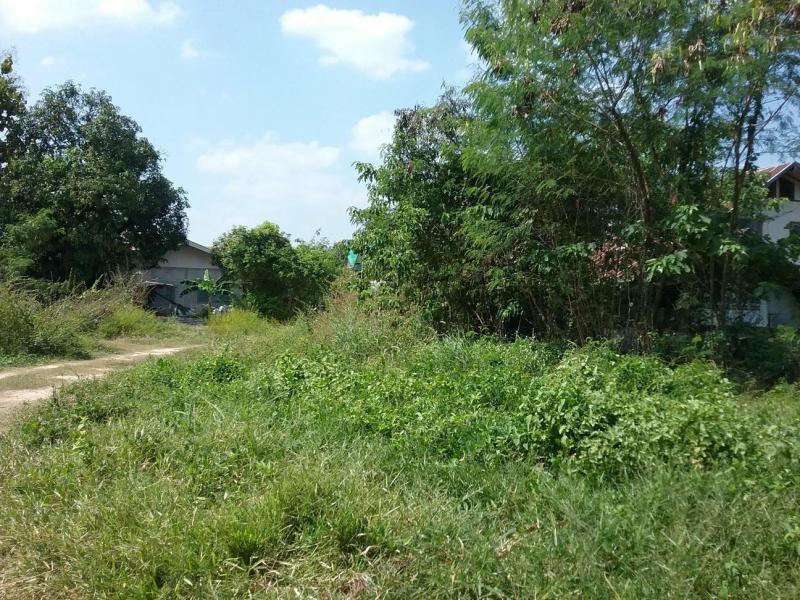 ที่ดินเปล่าหลุดจำนอง ธ.ธนาคารกรุงไทย ขอนแก่น เมืองขอนแก่น ศิลา