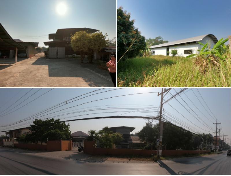ที่ดินพร้อมสิ่งปลูกสร้างหลุดจำนอง ธ.ธนาคารกรุงไทย เชียงใหม่ แม่ริม ริมเหนือ