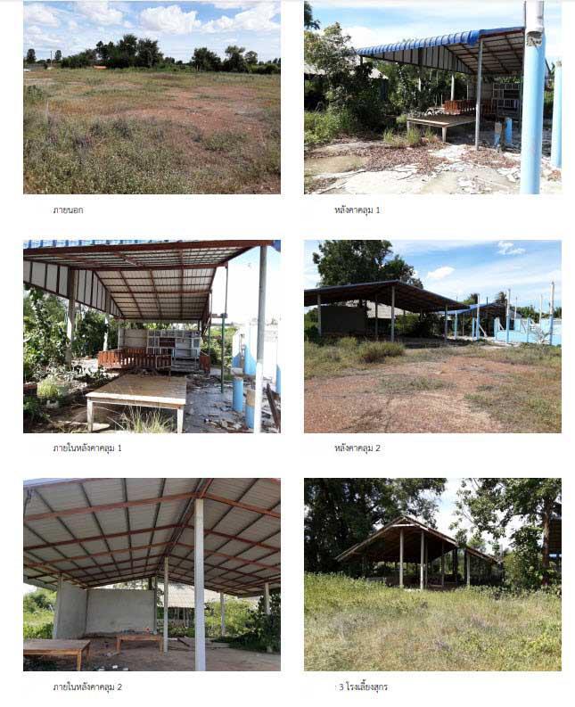 ที่ดินพร้อมสิ่งปลูกสร้างหลุดจำนอง ธ.ธนาคารกรุงไทย ชัยนาท วัดสิงห์ วังหมัน