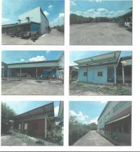 ที่ดินพร้อมสิ่งปลูกสร้างหลุดจำนอง ธ.ธนาคารกรุงไทย ขอนแก่น ชุมแพ ชุมแพ