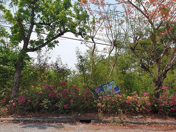 ที่ดินเปล่าหลุดจำนอง ธ.ธนาคารทหารไทย กรุงเทพมหานคร หนองจอก ลำผักชี