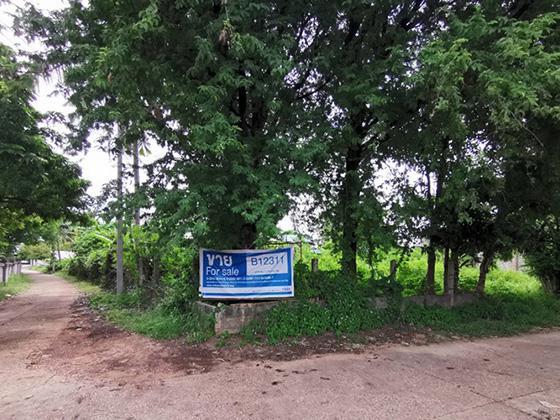 ที่ดินเปล่าหลุดจำนอง ธ.ธนาคารทหารไทย อุบลราชธานี ตระการพืชผล ขุหลุ