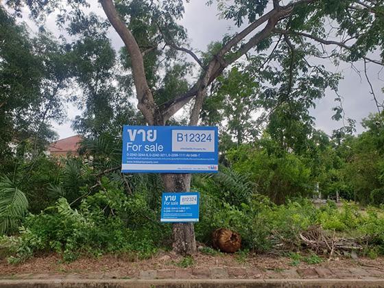 ที่ดินเปล่าหลุดจำนอง ธ.ธนาคารทหารไทย ปทุมธานี คลองหลวง คลองหนึ่ง