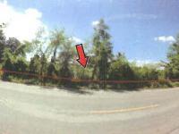 ที่ดินเปล่าหลุดจำนอง ธ.ธนาคารทหารไทย ชัยภูมิ จัตุรัส บ้านกอก
