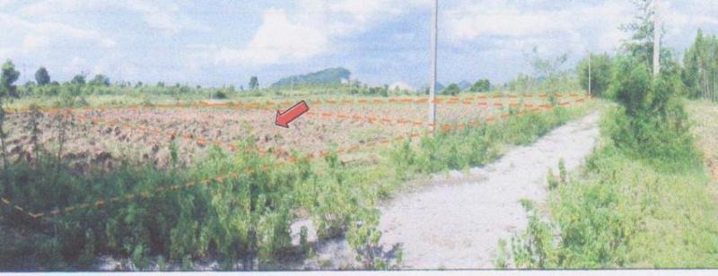 ที่ดินหลุดจำนอง ธ.ธนาคารอาคารสงเคราะห์ ราชบุรี จอมบึง รางบัว