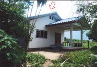 บ้านเดี่ยวหลุดจำนอง ธ.ธนาคารอาคารสงเคราะห์ ชัยภูมิ ภูเขียว ผักปัง