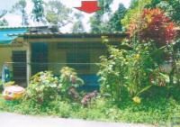 บ้านเดี่ยวหลุดจำนอง ธ.ธนาคารอาคารสงเคราะห์ สตูล ควนโดน ควนโดน