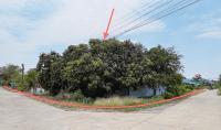 บ้านเดี่ยวหลุดจำนอง ธ.ธนาคารกสิกรไทย นครปฐม กำแพงแสน ห้วยขวาง