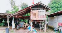 ขายบ้านพักอาศัย เลขที่ 110 อาคาร  ชั้น - หมู่บ้าน - ซอย ไม่มีชื่อ ถนน สายบ้านผาขวาง - ท่าวังผา (นน.1336) ตาลชุม ท่าวังผา น่าน ขนาด 0-3-10.00 ของ ธนาคารกสิกรไทย