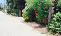 บ้านเดี่ยวหลุดจำนอง ธ.ธนาคารกสิกรไทย เชียงราย เมืองเชียงราย ริมกก