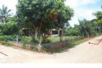 บ้านครึ่งตึกครึ่งไม้หลุดจำนอง ธ.ธนาคารไทยพาณิชย์ กาฬสินธุ์ เมืองกาฬสินธุ์ ขมิ้น