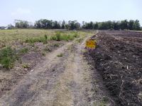 ที่ดินเปล่าหลุดจำนอง ธ.ธนาคารกรุงศรีอยุธยา จังหวัดลพบุรี ชัยบาดาล ชัยบาดาล