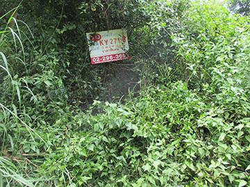 ที่ดินเปล่าหลุดจำนอง ธ.ธนาคารกรุงศรีอยุธยา จังหวัดอุบลราชธานี วารินชำราบ วารินชำราบ