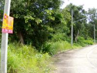 ที่ดินเปล่าหลุดจำนอง ธ.ธนาคารกรุงศรีอยุธยา จังหวัดลำปาง เกาะคา ศาลา