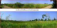 ที่ดินเปล่าแปลงใหญ่หลุดจำนอง ธ.ธนาคารธนชาต นครนายก องค์รักษ์ องค์รักษ์