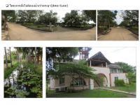 ที่ดินจัดสรรหลุดจำนอง ธ.ธนาคารธนชาต อยุธยา บางปะอิน บ้านแป้ง