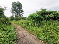 ที่ดินเปล่าหลุดจำนอง ธ.ธนาคารทหารไทยธนชาต ภูเก็ต เมืองภูเก็ต รัษฎา